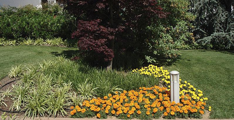 Manutenzione giardini bergamo vivaio bergamelli for Manutenzione giardini